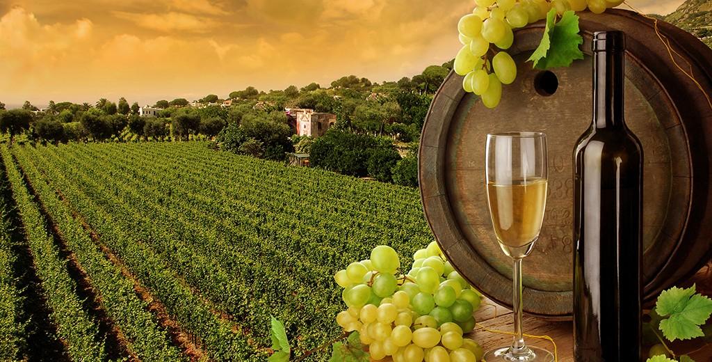 wina-szlachetna-siodemka-1024x520.jpg