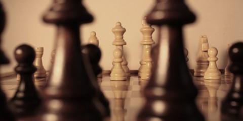szachy biznes